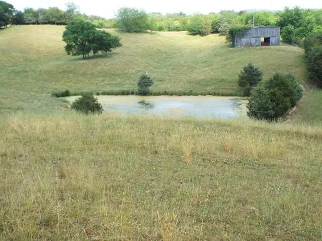 2598 Wesley Chapel Road, Greeneville, TN 37745 (MLS #9923808) :: Highlands Realty, Inc.