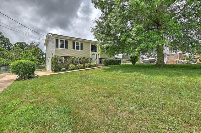 255 Brian Circle, Afton, TN 37616 (MLS #9923848) :: Conservus Real Estate Group