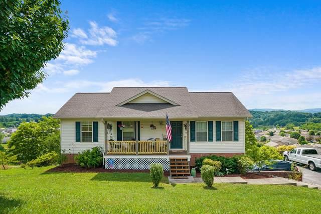 300 Mountain Creek Court, Jonesborough, TN 37659 (MLS #9923880) :: Bridge Pointe Real Estate