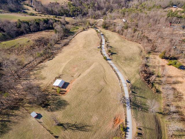 949 Chapel Way, Parrotsville, TN 37843 (MLS #9923901) :: Highlands Realty, Inc.