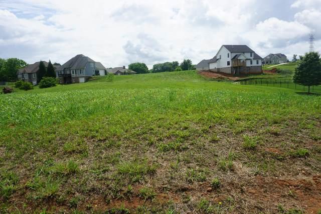209 Forest Lane, Blountville, TN 37617 (MLS #9923908) :: Highlands Realty, Inc.