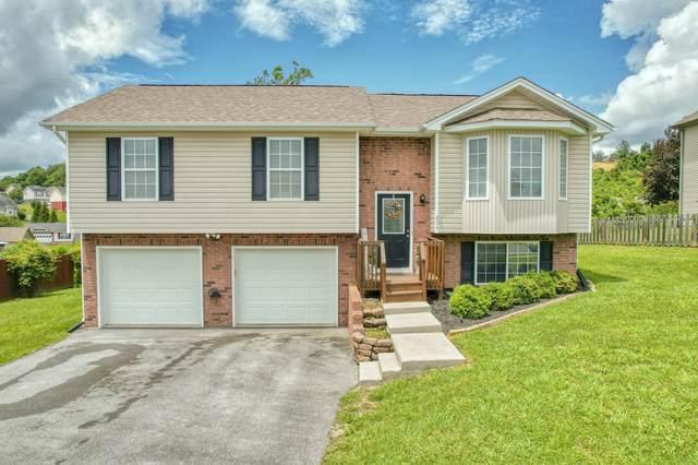 2077 Ida Sue Drive, Jonesborough, TN 37659 (MLS #9923928) :: Bridge Pointe Real Estate