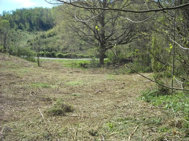 00 Big Hill Road, Mooresburg, TN 37811 (MLS #9923962) :: Highlands Realty, Inc.