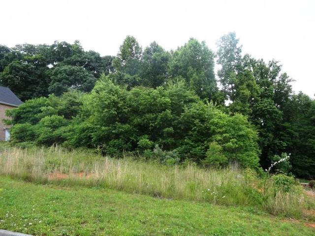 160 Sugarcane Lane, Blountville, TN 37617 (MLS #9924088) :: Red Door Agency, LLC