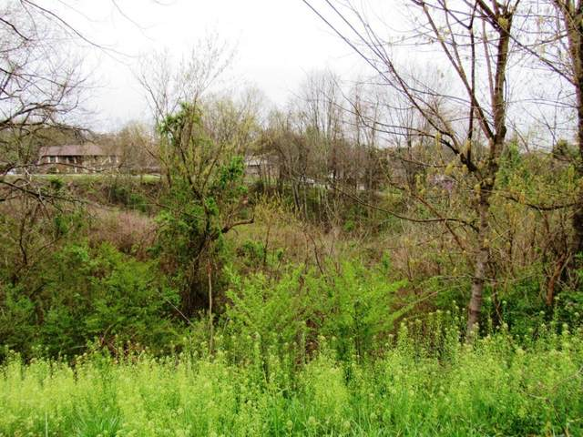 Tbd Whispering Hills Dr/Sedgefield, Kingsport, TN 37660 (MLS #9924089) :: Conservus Real Estate Group