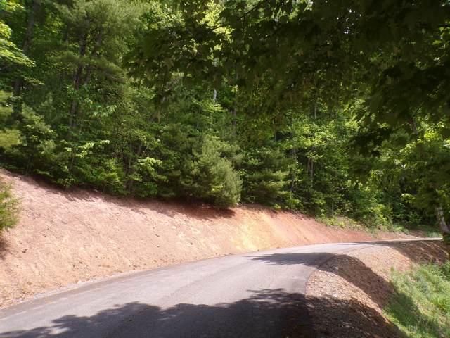 Tbd Hiddenwood Drive, Mountain City, TN 37683 (MLS #9924129) :: Conservus Real Estate Group