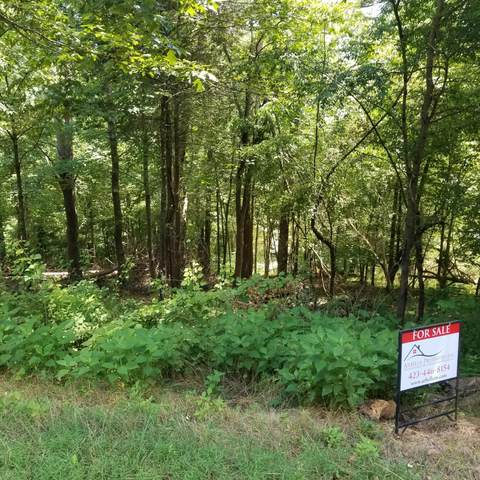 1917 Chelaque Way, Mooresburg, TN 37811 (MLS #9924148) :: Conservus Real Estate Group