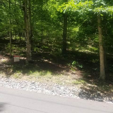 202 Toqua Lane, Mooresburg, TN 37811 (MLS #9924151) :: Conservus Real Estate Group