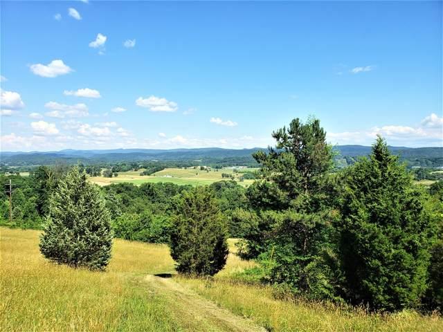263 Cave Ridge Road, Rogersville, TN 37857 (MLS #9924171) :: Highlands Realty, Inc.