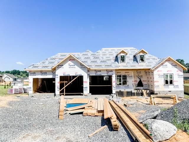 829 Brady Way, Jonesborough, TN 37659 (MLS #9924177) :: Conservus Real Estate Group