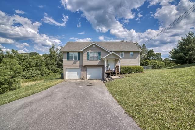 317 Emma Grace Drive, Jonesborough, TN 37659 (MLS #9924180) :: Red Door Agency, LLC