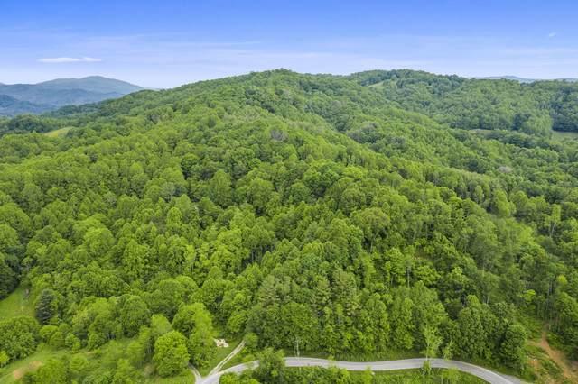 Tbd Buck Mtn Road, Roan Mountain, TN 37687 (MLS #9924188) :: Highlands Realty, Inc.