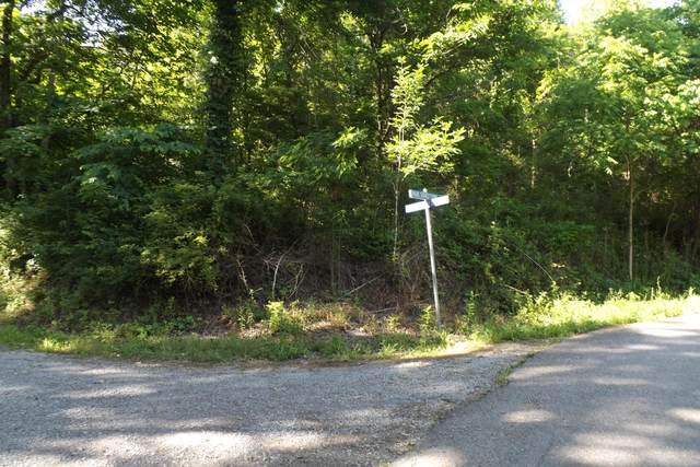 0 Stockcreek Way, Duffield, VA 24244 (MLS #9924222) :: Red Door Agency, LLC