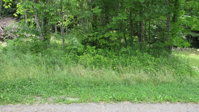 2761 Fall Branch Road, Mountain City, TN 37683 (MLS #9924223) :: Red Door Agency, LLC