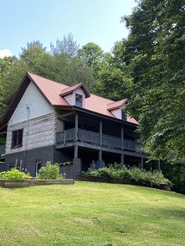 335 Bear Cage Road, Roan Mountain, TN 37687 (MLS #9924239) :: Highlands Realty, Inc.