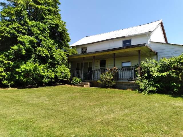 4105 Timberlake Road, Johnson City, TN 37601 (MLS #9924243) :: Conservus Real Estate Group