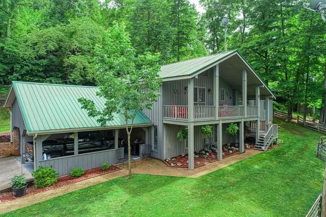 206 Cope Lane, Rogersville, TN 37857 (MLS #9924261) :: Conservus Real Estate Group