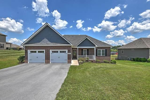 1317 Peaceful Drive, Jonesborough, TN 37659 (MLS #9924266) :: Conservus Real Estate Group