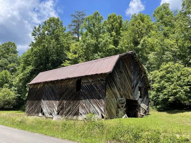 00 Big Creek Road, Hartford, TN 37753 (MLS #9924315) :: Highlands Realty, Inc.