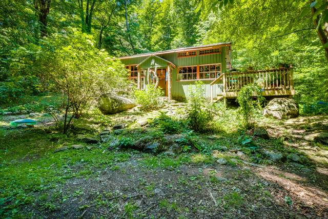 140 Big Cove Creek Road, Roan Mountain, TN 37687 (MLS #9924325) :: Conservus Real Estate Group