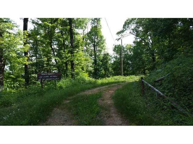Tbd Carvers Knob Road, Little Switzerland, NC 28749 (MLS #9924368) :: Red Door Agency, LLC