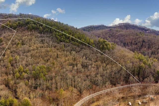 Tbd Roan Creek Road, Butler, TN 37640 (MLS #9924392) :: Highlands Realty, Inc.