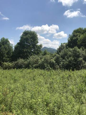 000 Highway 67, Butler, TN 37640 (MLS #9924561) :: Tim Stout Group Tri-Cities