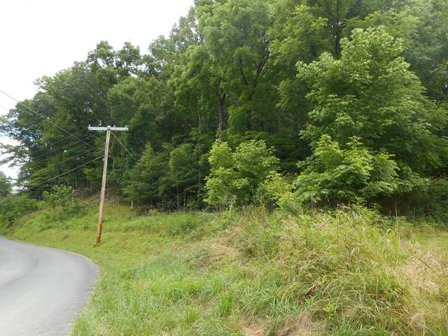 Tbd Whispering Pines Road, Johnson City, TN 37601 (MLS #9924580) :: Tim Stout Group Tri-Cities