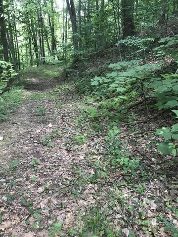 0-0 Of Old Church Loop Road, Butler, TN 37640 (MLS #9924646) :: Tim Stout Group Tri-Cities