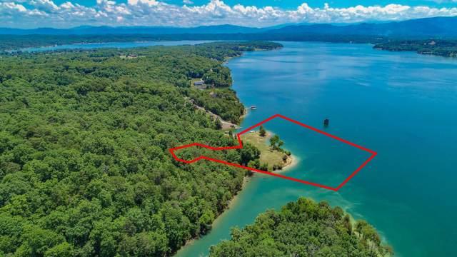 99 Acres Stoneway Place, Baneberry, TN 37890 (MLS #9924673) :: Bridge Pointe Real Estate