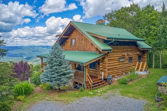 3500 Locust Gap Road, Mountain City, TN 37683 (MLS #9924895) :: Conservus Real Estate Group