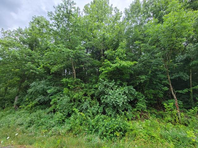 Tbd Ivy Valley Road, Gate City, VA 24251 (MLS #9924920) :: Highlands Realty, Inc.