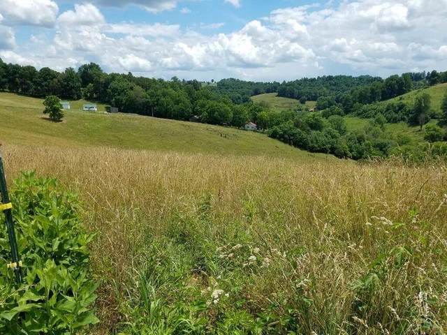 Tbd Yellow Branch/Seal Town Road, Sneedville, TN 37869 (MLS #9924965) :: Tim Stout Group Tri-Cities