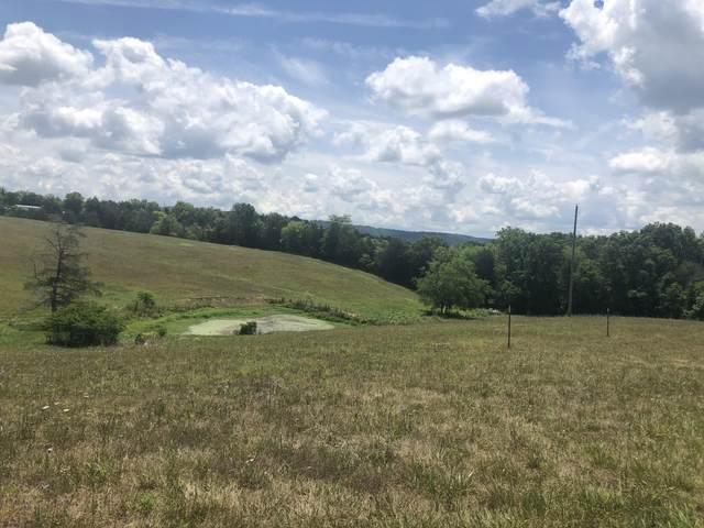 7126 Mountain Valley Road, Whitesburg, TN 37891 (MLS #9925002) :: Bridge Pointe Real Estate