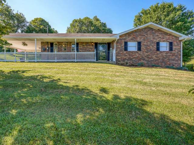 685 Weaver Branch Road, Bluff City, TN 37618 (MLS #9925027) :: Tim Stout Group Tri-Cities