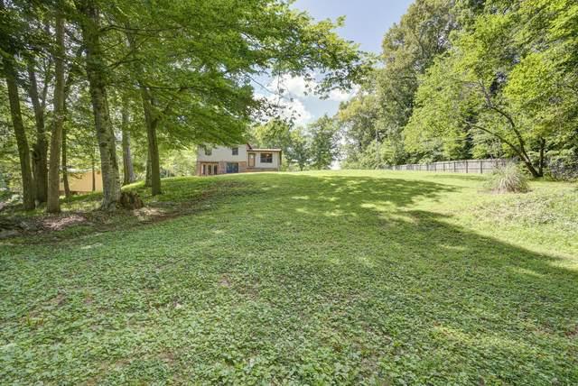 519 Boring Chapel Road, Gray, TN 37615 (MLS #9925034) :: Bridge Pointe Real Estate