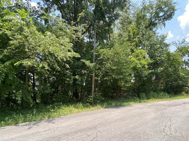 Tbd Starling Drive, Kingsport, TN 37660 (MLS #9925133) :: Red Door Agency, LLC