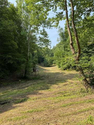 00 Reservoir Road, Sneedville, TN 37869 (MLS #9925144) :: Tim Stout Group Tri-Cities