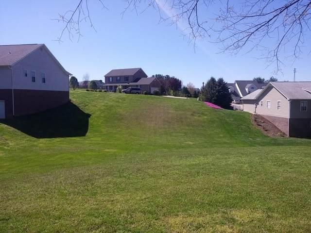 399 Appian Way, Greeneville, TN 37743 (MLS #9925193) :: Tim Stout Group Tri-Cities