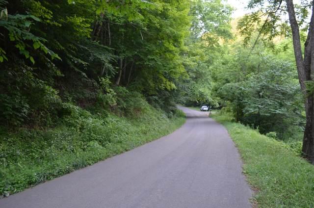 Tbd Boozy Creek Road, Bristol, VA 24202 (MLS #9925252) :: Highlands Realty, Inc.