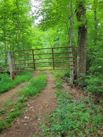 00 Arrowhead Extension, Erwin, TN 37650 (MLS #9925323) :: Red Door Agency, LLC