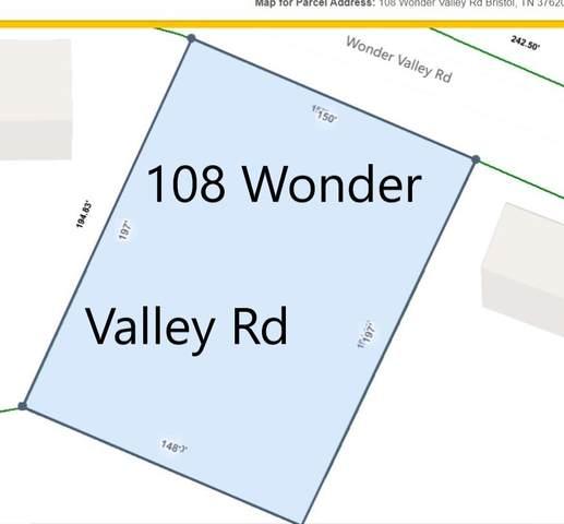 108 Wonder Valley Road, Bristol, TN 37620 (MLS #9925453) :: Conservus Real Estate Group