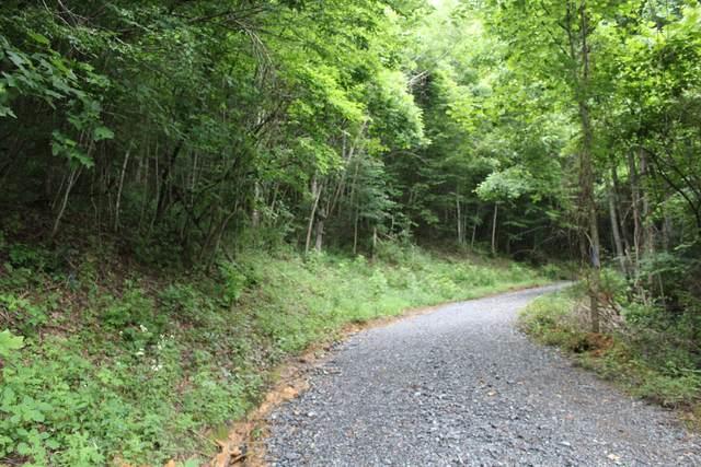 Tbd Long Hollow Rd, Elizabethton, TN 37643 (MLS #9925516) :: Highlands Realty, Inc.