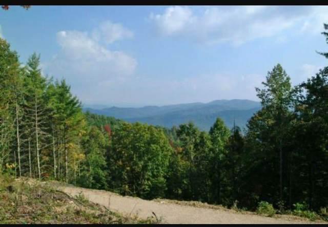 804 Vista Road, Butler, TN 37640 (MLS #9925569) :: Highlands Realty, Inc.