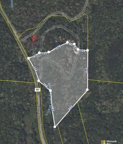 247 Hwy Tn-107, Del Rio, TN 37727 (MLS #9925605) :: Tim Stout Group Tri-Cities