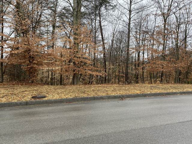 2011 Scenic Pointe Place, Church Hill, TN 37642 (MLS #9925757) :: Red Door Agency, LLC