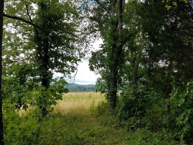 00 Highway 131, Thorn Hill, TN 37881 (MLS #9925768) :: Tim Stout Group Tri-Cities