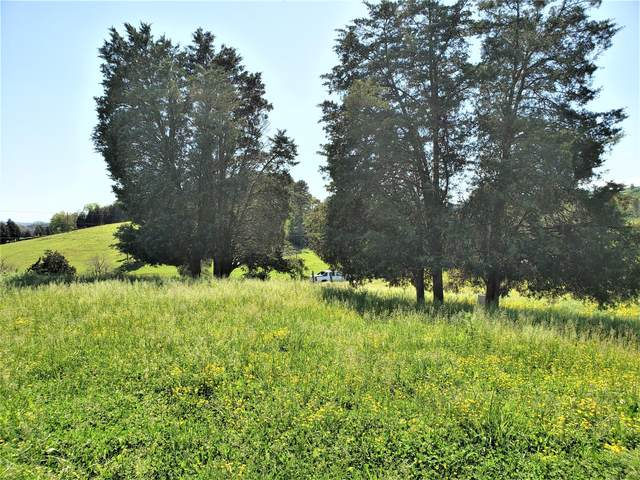 Tbd Young Road, Bulls Gap, TN 37711 (MLS #9925795) :: Bridge Pointe Real Estate