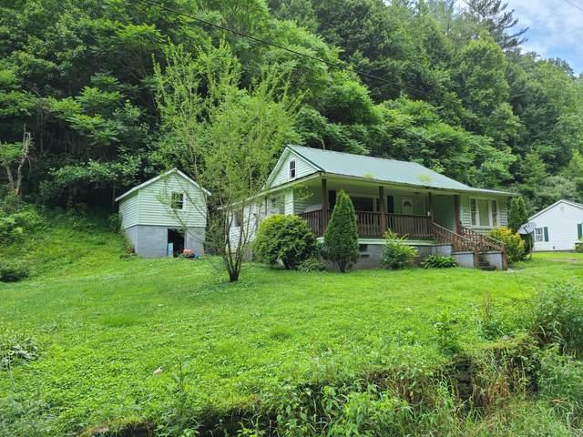 169 Doe Branch Road, Haysi, VA 24256 (MLS #9925814) :: Tim Stout Group Tri-Cities