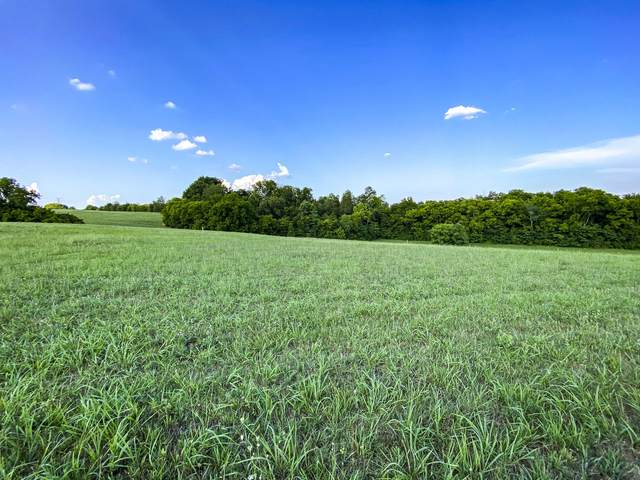 Lot 14 Forgety Road, Jefferson City, TN 37760 (MLS #9925854) :: Conservus Real Estate Group